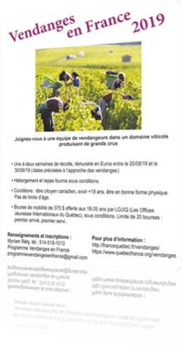 Vign_Vendanges_2019